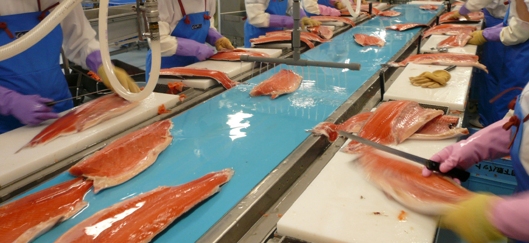 The big fish industry