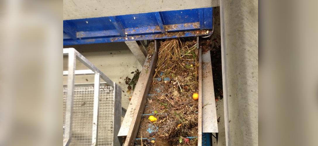 Procesamiento de biomasa