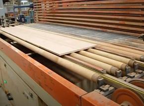 Wood Industry, Sleeves, Profile belts